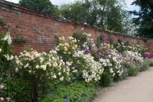 2012-06-19 Mottisfont rose garden1
