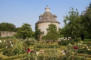 2012-07-26 Rousham rose garden1