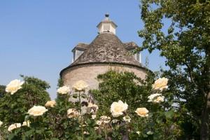 2012-07-26 Rousham rose garden3