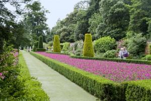 2013-07-04 Cliveden Long Garden4