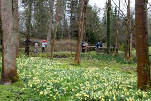 2014-03-25 CGC Evenley Wood5