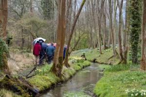 2014-03-25 CGC Evenley Wood6