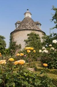 2012-07-26 Rousham rose garden2