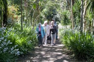 2015-06-03 Abbotsbury Gardens6