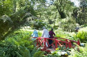 2015-06-03 Abbotsbury Gardens7