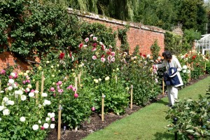 2015-09-15 The Vyne walled garden2