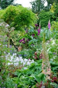 2015-06-15 Open Gardens6