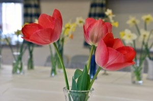 2016-04-02 Red tulips