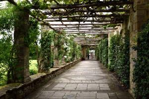 2016-06-13 Hever Castle Italian Garden8