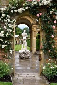 2016-06-13 Hever Castle Rose Garden2