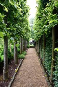 2016-06-15 Clinton Lodge Gardens2