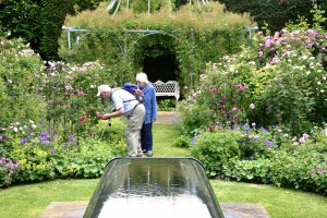 2016-06-15 Clinton Lodge Pye Water Feature Garden3