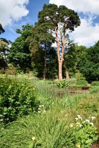 2016-06-15 Wakehurst Place Garden1