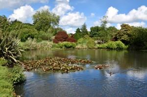 2016-06-15 Wakehurst Place Mansion Pond