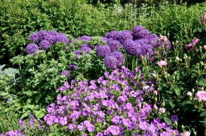 2016-06-15 Wakehurst Place Walled Garden1