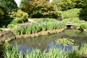 2016-06-15 Wakehurst Place Water Garden