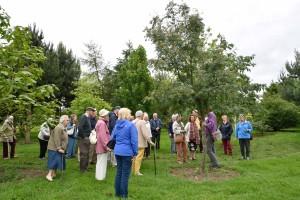 2017-06-12 Bluebell Arboretum2