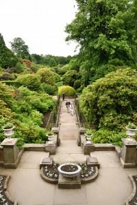 2017-06-13 Biddulph Grange Garden4