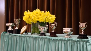 2018-04-07 Spring Show cups