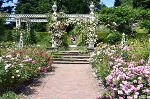 2018-06-21 Bodnant Gardens13