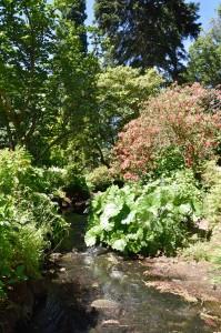 2018-06-21 Bodnant Gardens15