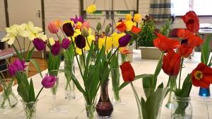 2019-04-06 CGC Spring Show2
