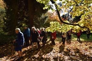 2019-10-22 Westonbirt32